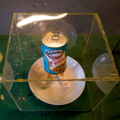 Alternative Ulster: the Vegetarian Option // Perspex. Glue Sticks, Tin of Baked Beans, Acrylic Paint, Wood, Ceramic Bowl // 35x 35 x 35 cm // 2010
