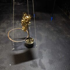 Centrifuge of the Golden Boughs DNA // Wood,, Clamps, Bamboo, Tape, Motor. Tie Wraps, Rope, String, Dead Potted Plant, Copper // Dimensions Variable // 2008