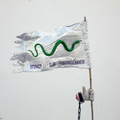 Dividend & Conquer Flag // Aluminium Bubble Wrap, Bamboo, Wire, Plastic Snake, Glue, Permanent Marker, Cardboard, Glove, Satin // 80 x 70 cm // 2016
