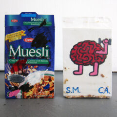 Burning Brain Cells on Santa Monica Beach // Ralphs Muesli, Wood, acrylic Paint // 35 x 25 x 10 cm // 2011