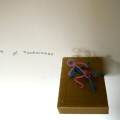 Cleaning the Pipes // Pipe Cleaners, Cardboard, permanent Marker // 12 x 6 x 18 cm // 2007