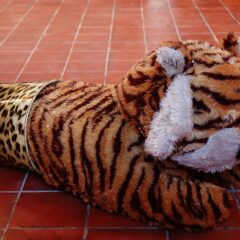 Celtic Leopard // Tiger Toy, Leopard Bin // 100 x 40 x 40 cm // 2006